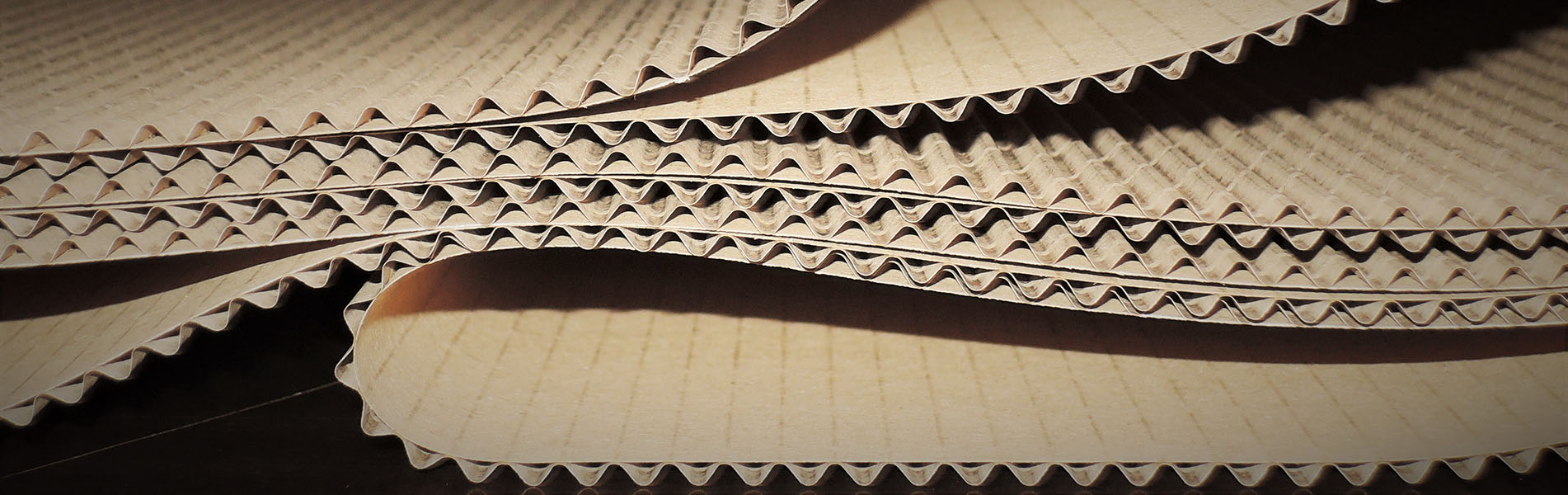 Reparación y actualización de maquinaria del sector del cartón